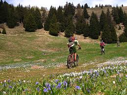 Mountain Bike Lombardia