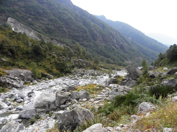 Torrente in Val Codera