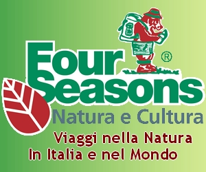 Four Seasons Viaggi