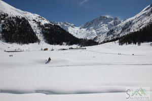 Skieda2018AlpeVago
